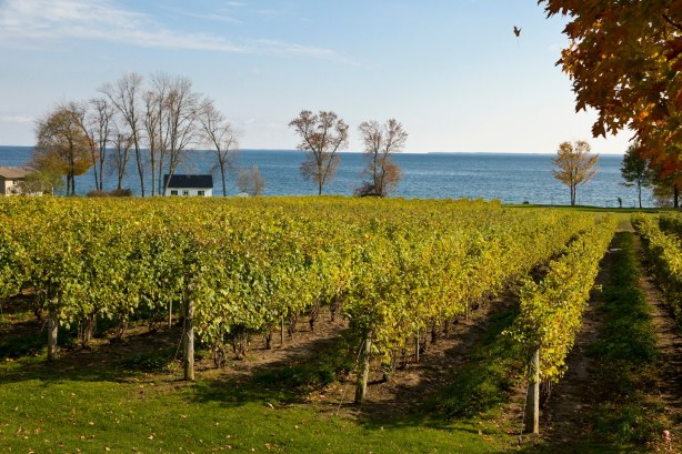Wine Tasting Tour in Waupoos Prince Edward County 2011