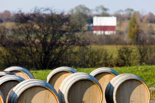 Hillier Wine Region Prince Edward County Ontario