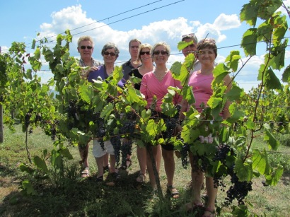 Group Wine Tour Prince Edward County