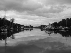 Picton Harbour by David Riley